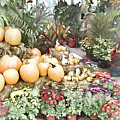 Fall Decorating At The Market by Leslie Montgomery
