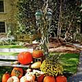 Fall Display by Debbie Oppermann