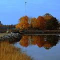 Fall by Doug Mills