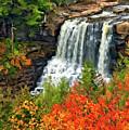 Fall Falls by Steve Harrington
