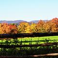 Fall Farm No. 8 by Kevin Gladwell