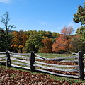 Fall Fence by Eric Liller