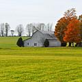 Fall Field by Tim Nyberg