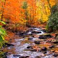Fall Fire by Randy Steele