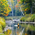 Fall Fishing by David Lee Thompson