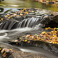 Fall Flow by Karin Pinkham