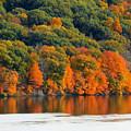 Fall Foliage In Hudson River 14 by Jeelan Clark