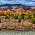 Fall Foliage Near Ghost Ranch by Matt Suess
