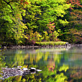 Fall Foliage Reflection by Christina Rollo