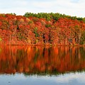 Fall Foliage Reflection Kennebec River Hallowell by David Rafuse Captured Images of Maine