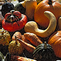 Fall Fruit And Vegetables  by Thomas Firak