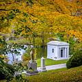 Fall Graves by Michael Cummiskey