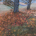 Fall Hammock by Robert Bissett