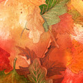 Fall Impressions V by Irina Sztukowski