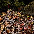 Fall In August by Kelley King