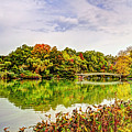 Fall In Central Park by Geraldine Scull