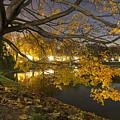 Fall In Dresden by Joshua Zermeno