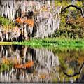 Fall In Florida by Pedro Katz