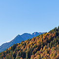 Fall In Gstaad by Werner Dieterich