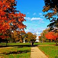 Fall In Guilford by Catie Canetti