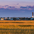 Fall In The Charleston Low Country, Sc by Donnie Whitaker