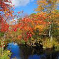 Fall In New England by Edward Sobuta