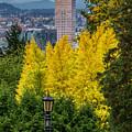 Fall In Portland Or 2 by George Herbert