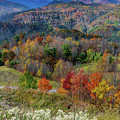 Fall In Tennessee by David Meznarich