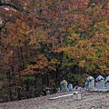 Fall In The Cemetery by George Taylor