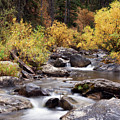 Fall In The Grand Tetons by Cindy Archbell