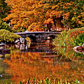 Fall In The Japanese Gardens by Jean Haynes