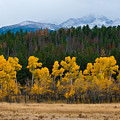 Fall In The Rockies by Robert J Caputo