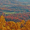 Fall In The Valley by Itai Minovitz