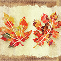 Fall Leaves Collection by Irina Sztukowski