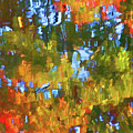 Fall Leaves On River 12 by Jeelan Clark