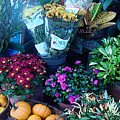 Fall Market Scene In Watercolor by Suzanne Gaff