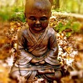 Fall Meditation by Alice Schwager