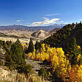 Fall Monitor Pass by Larry Darnell