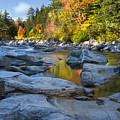 Fall Morning At Swift River by Darla Bruno