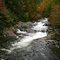 Fall Mountain Stream by James Jones