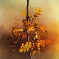 Fall Oak Leaves by Lynn Bauer