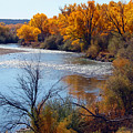 Fall On Animas River by Howard Thompson