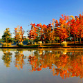 Fall On Lake by Ralph  Perdomo