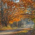 5002 - Fall On Oak Road by Sheryl L Sutter