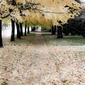 Fall On Oak Street by Lee Santa