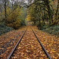 Fall On The Tracks by HW Kateley