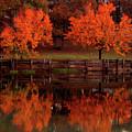 Fall On Toledo Bend by Michael Tidwell