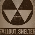 Fall Out Shelter by Bill Cannon