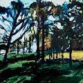 Fall Park Scene by Garry Pisarek