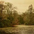 Fall Pond by Margie Hurwich